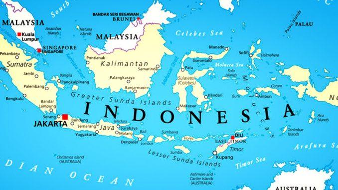 5 Hewan Langka di Indonesia Yang Hampir Punah